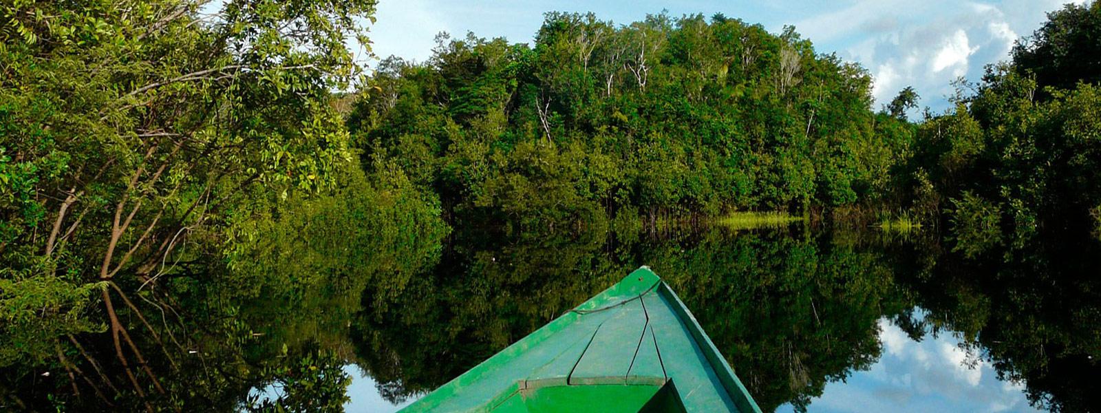 La Selva Amazónica, el pulmón del mundo