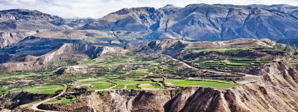 El cañón del Colca, un valle paradisíaco (Perú)